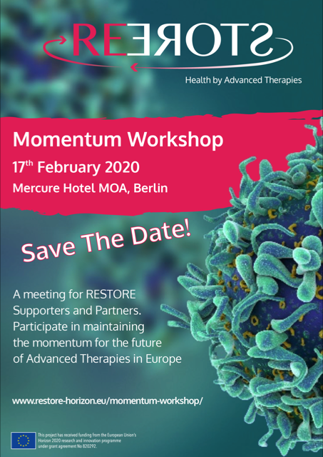 momentum workshop flyer